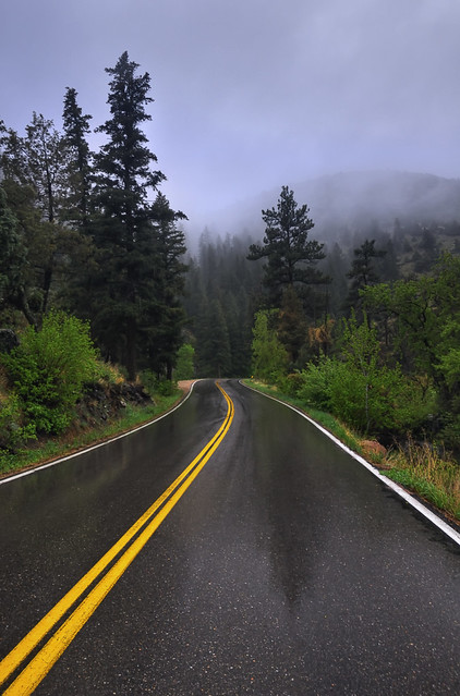 Misty Mountain Road Trip