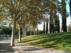 Scenic Walking Barcelona