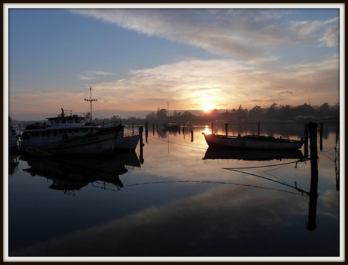 sunrise boats tasmania launceston tamarriver