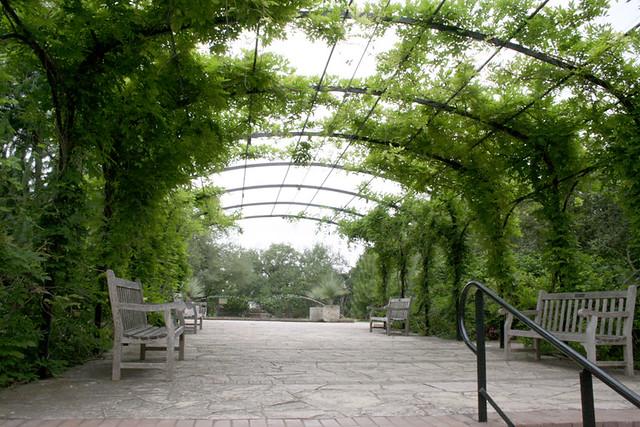 Wisteria Arbor At San Antonio Botanical Garden Flickr Photo Sharing