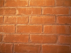 Brick Wall in Reflected Light