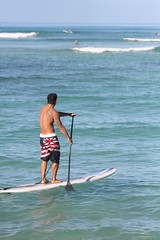 surface water sports, boardsport, sports, sea, surfing, wind, wind wave, wave, water sport, stand up paddle surfing, surfboard, paddle,