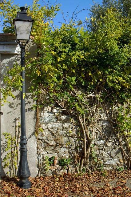 mur lampadaire et plantes grimpantes photo prise dans. Black Bedroom Furniture Sets. Home Design Ideas