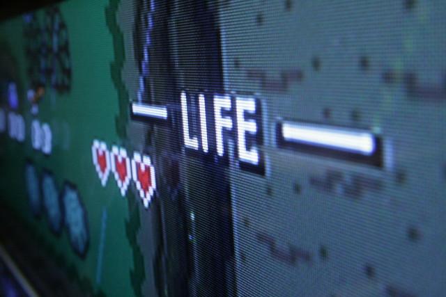 Zelda Life