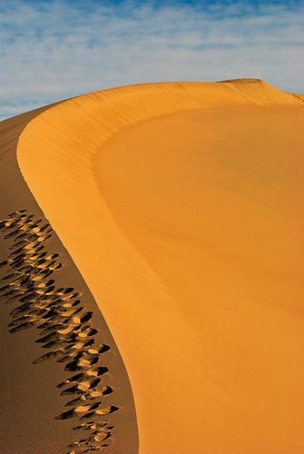 Scoliosis Dune