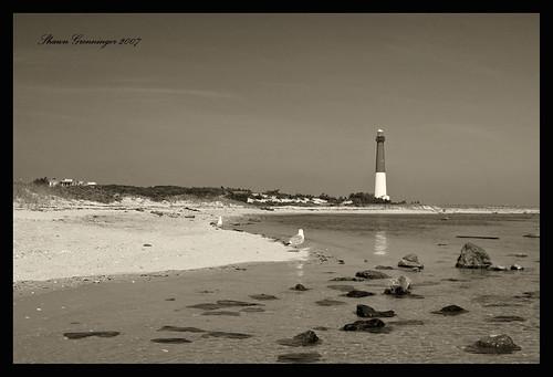 usa lighthouse seascape tower beach water d50 blackwhite newjersey nikon rocks nj barnegat beacon barnegatlighthouse barnegatlight top20lh superaplus aplusphoto diamondclassphotographer photofaceoffwinner pfogold aphotocontest35