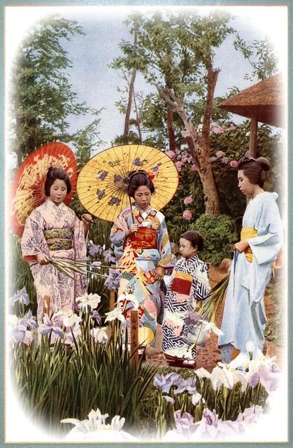 THREE GEISHA AND A CHILD -- Walking in an Iris Garden of