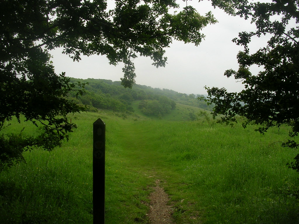 looking back Tring Circular