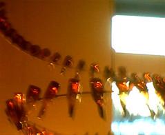NBB Beer Bottle Lighting - Fort Collins, Colorado