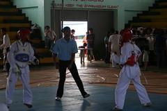 striking combat sports, individual sports, contact sport, taekwondo, sports, combat sport, martial arts,