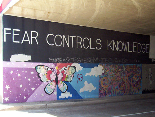 Fear Controls Knowledge inside Tunnel