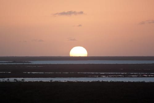 water scrub turksandcaicosislands middlecaicos inlets mudjinharbor whalewatchvilla