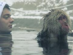 onsen with monkey