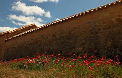 Aveyron 2011