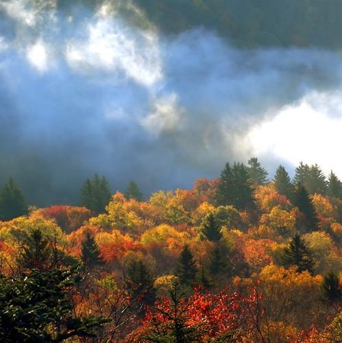 autumn sun fall sunrise landscape scenery carolina blueridgeparkway wns brp westernnorthcarolina