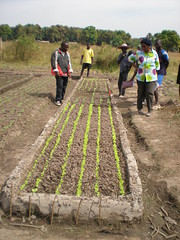 sowing(0.0), track(0.0), agriculture(1.0), farm(1.0), field(1.0), soil(1.0), farmworker(1.0), crop(1.0), plantation(1.0),