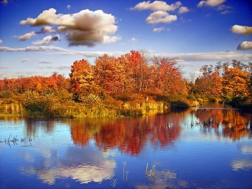 Mete d'autunno: il nuovo turismo è foliage