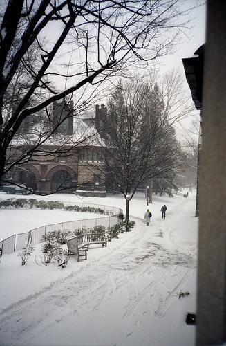 snow princeton 1989 alexanderhall january1989
