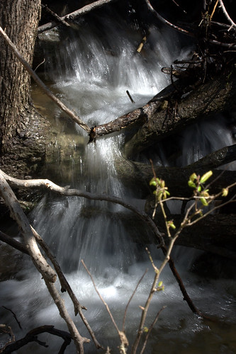 water creek flow waterfall stream branches flowing