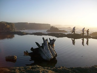 Walking along the edge of the tidal pool at sunset at Glass Beach, Fort Bragg, CA - glassbeach33