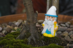 garden gnome, lawn ornament, figurine, statue, toy,