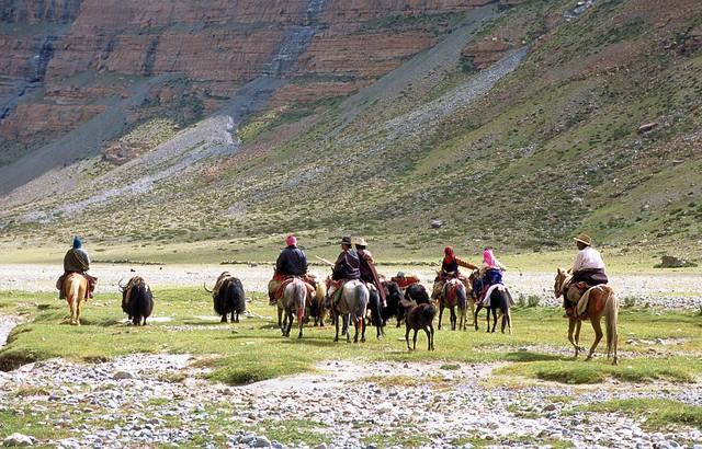 Nomads at Kailash kora