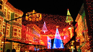 Osborne Spectacle of Dancing Lights at Disney World