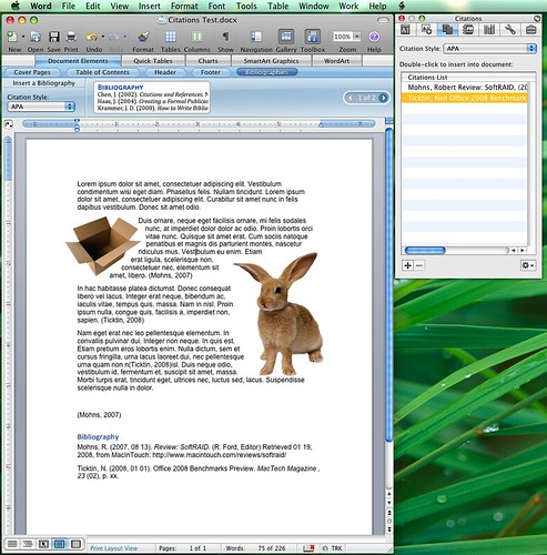 All sizes | Word 2008 Citations and Bibliography | Flickr - Photo