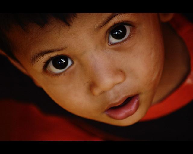 The Innocent Glance (DSC_0667)