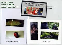 Moo trades