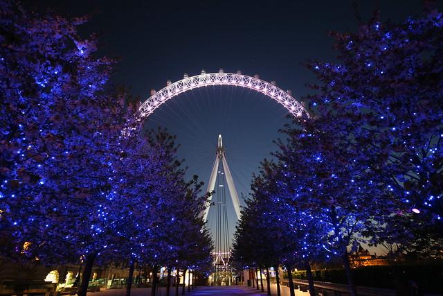 London Eye @ Summer