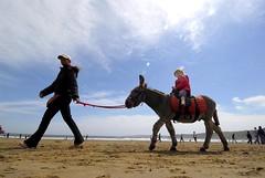 Seaside traditional fun