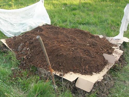 chaosgarten anlage meines neuen permakulturbeetes. Black Bedroom Furniture Sets. Home Design Ideas
