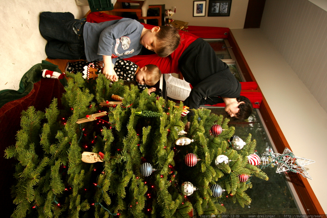 Baby Room Tree Decals