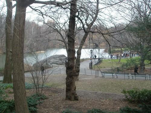Central Park