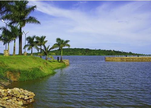flowers blue green may monkeys uganda lakevictoria spekeresort k200d waterpalmtrees pentaxjjp