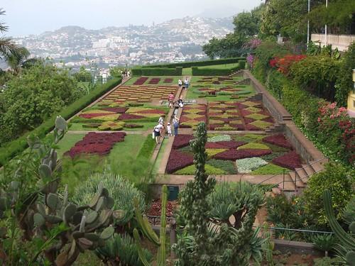 Madeira - Funchal - Jardim Botanico