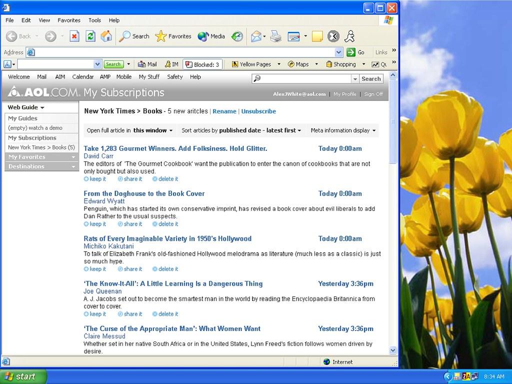 AOL WDP / 2004 / SML UI Design + SML Interaction Design (a