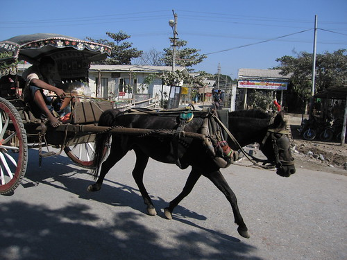 Horsecart - Mandalay, Myanmar Burma