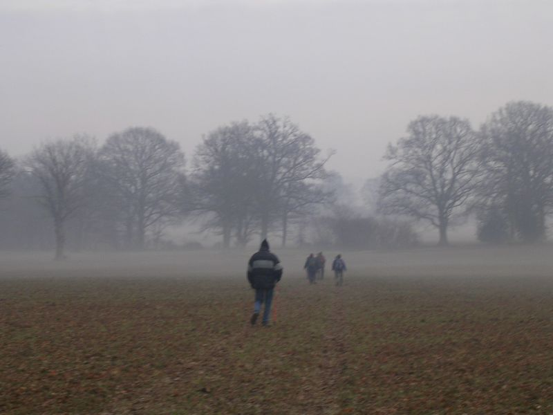 into the mist Dorking to Reigate