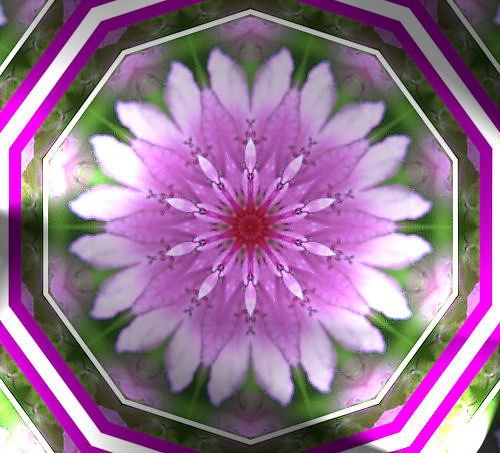 Pretty Pink Kaleidoscope...