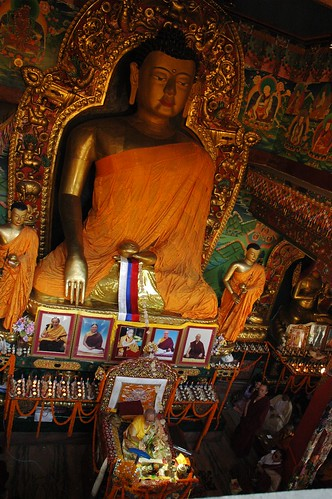 Under a giant statue of Lord Buddh, shrine, His Holiness Dagchen Rinpoche leads prayers, monks and sangha members, photos of Sakya lamas, with a central portrait of His Holiness the Great 14th Dalai Lama, Tharlam Monastery, Boudha, Kathmandu, Nepal by Wonderlane