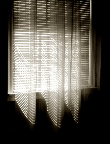 Curtain and Shades