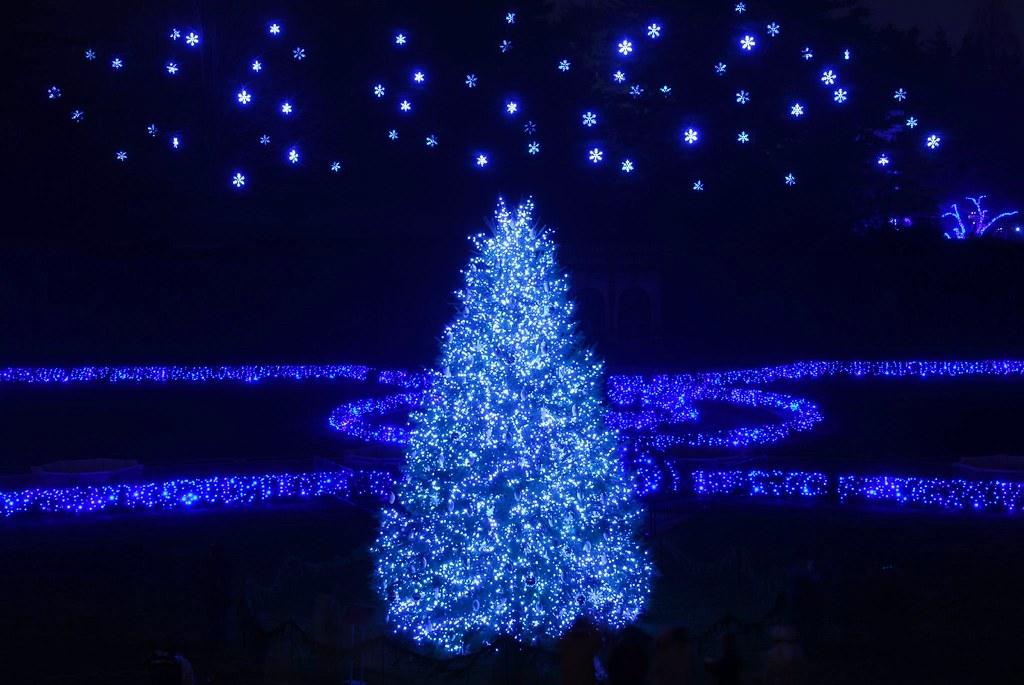 starry starry christmas night by glenox glen navarra - Starry Christmas