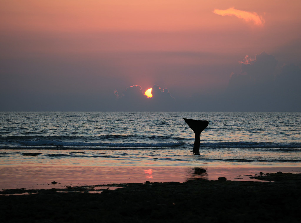 Sunset Sea Sky Sun Beach Nature Sunshine Sunrise Canon Luca Tramonto Alba Havana Cuba Playa Natura