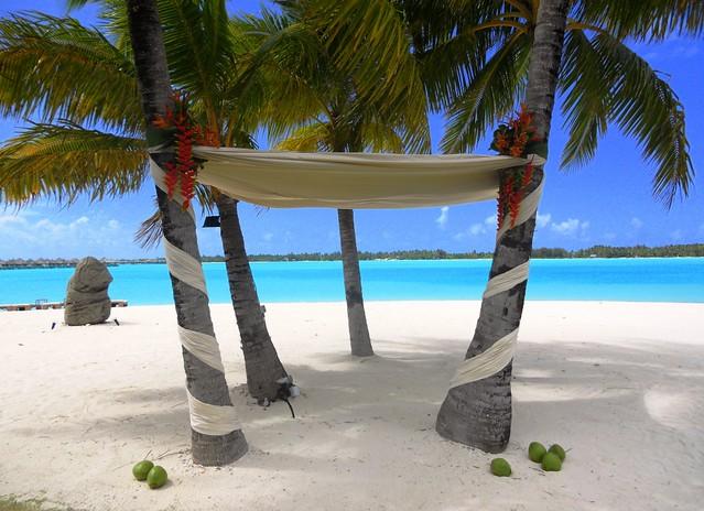 the st regis bora bora resort tropical wedding arch