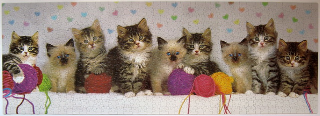 Knitten Kittens (Keith Kimberlin)