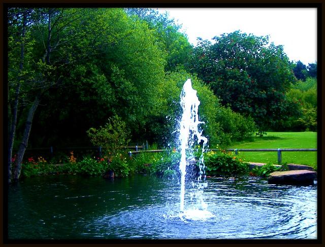 golden acre park Leeds, Fujifilm FinePix A370