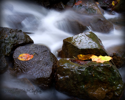 autumn usa color fall nature leaves season landscape waterfall rocks stream ia brook panora