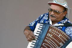 accordion, folk instrument, wind instrument,